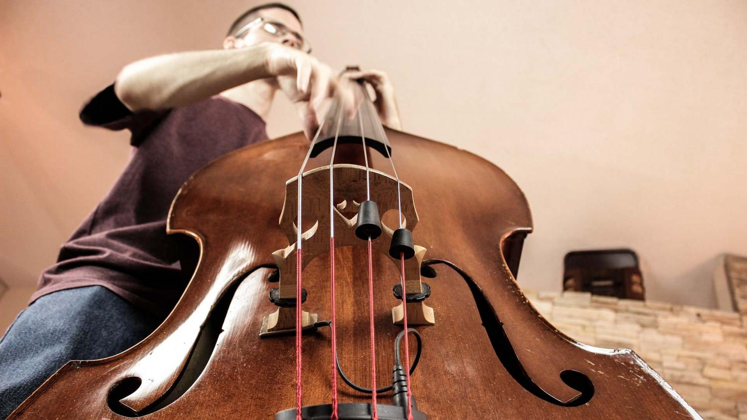Acoustic double bass, a service available for online studio tracking